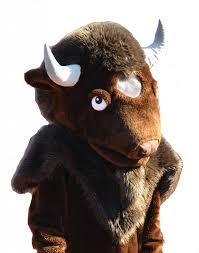 Harding Bull
