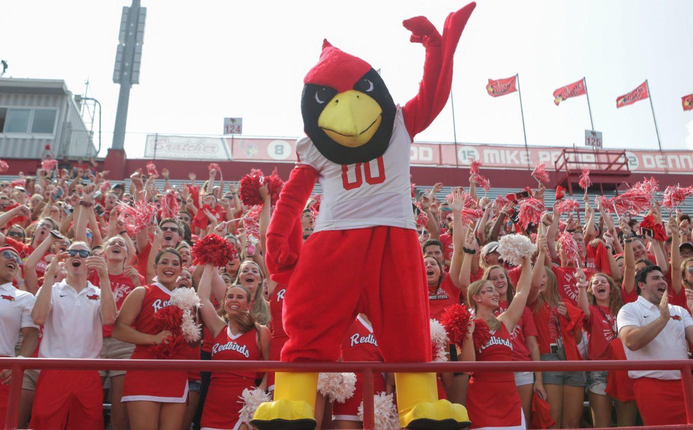 Reggie Red Bird 3